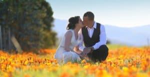 Elope tasmania elopement packages